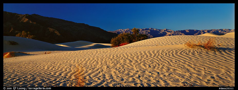 Desert landscape with sand ripples, Mesquite dunes. Death Valley National Park (color)