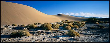 Desert landscape with mud slabs, bushes, and sand dunes. Death Valley National Park, California, USA.
