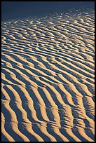 Close-up of Sand ripples, sunrise. Death Valley National Park, California, USA.