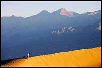 Photographer on dune ridge at sunrise. Death Valley National Park, California, USA.