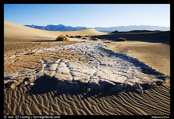 Cracked mud and sand ripples, Mesquite Sand Dunes, early morning. Death Valley National Park, California, USA.