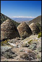 Wildrose Charcoal kilns with Sierra Nevada in background. Death Valley National Park, California, USA.