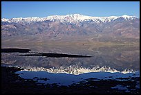 Telescope Peak and Panamint range reflected in a rare seasonal lake, early morning. Death Valley National Park, California, USA. (color)