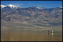 Visitors wading in the rare seasonal lake. Death Valley National Park, California, USA.