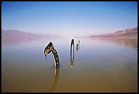 Loch Ness Monster art installation in rarissime seasonal lake. Death Valley National Park, California, USA.
