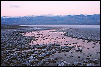 Pond and salt formations, Badwater, dawn. Death Valley National Park, California, USA. (color)