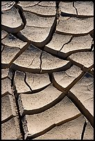 Cracked mud. Death Valley National Park, California, USA. (color)