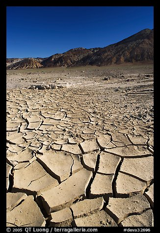 Mud cracks and Funeral mountains. Death Valley National Park (color)