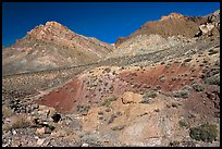 Slopes above Titus Canyon. Death Valley National Park, California, USA. (color)