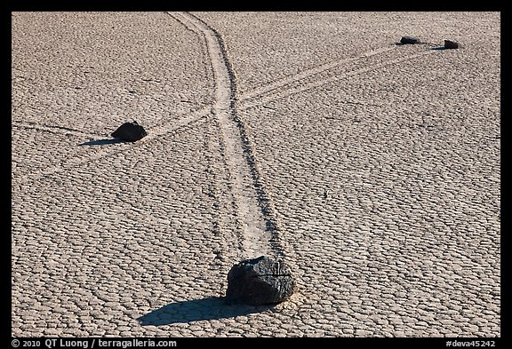 Intersecting travel grooves of sliding stones, the Racetrack. Death Valley National Park (color)