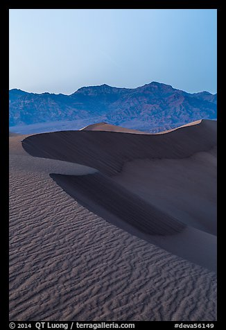 Sand dunes and Amargosa Range at dusk. Death Valley National Park (color)