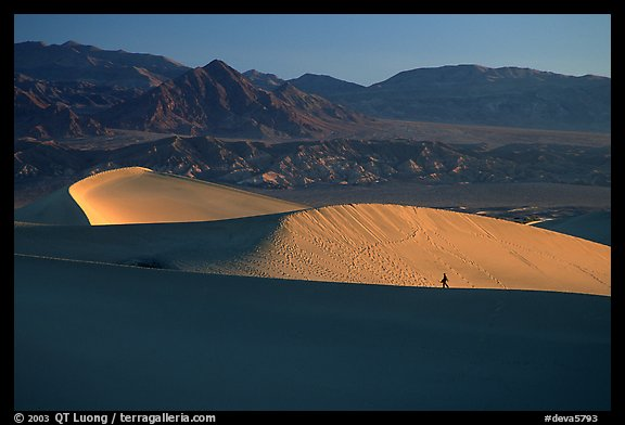 Hiker on ridge, Mesquite Dunes, sunrise. Death Valley National Park, California, USA.