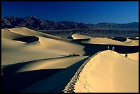 Dune field with hikers, Mesquite Dunes. Death Valley National Park, California, USA. (color)