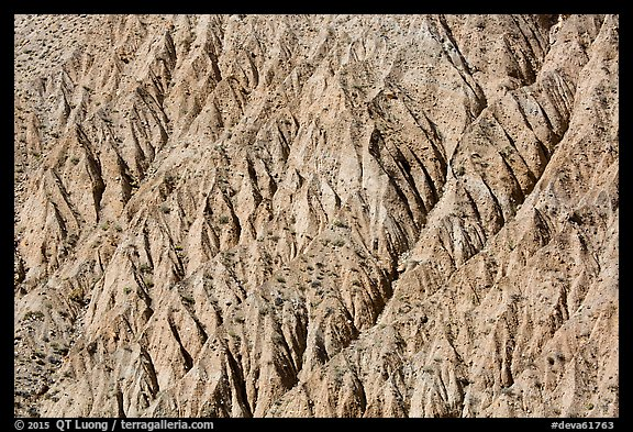 Eroded gullies near Emigrant Pass. Death Valley National Park (color)