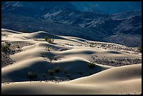 Undulating Ibex dune field. Death Valley National Park ( color)