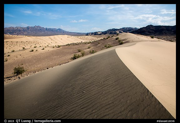 Ibex Dunes and Ibex Hills. Death Valley National Park (color)