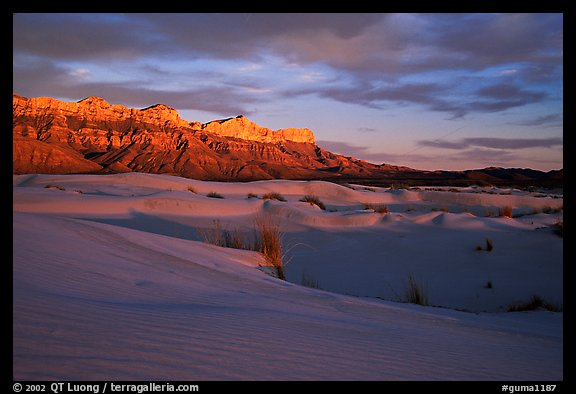 Salt Basin dunes and Guadalupe range at sunset. Guadalupe Mountains National Park (color)