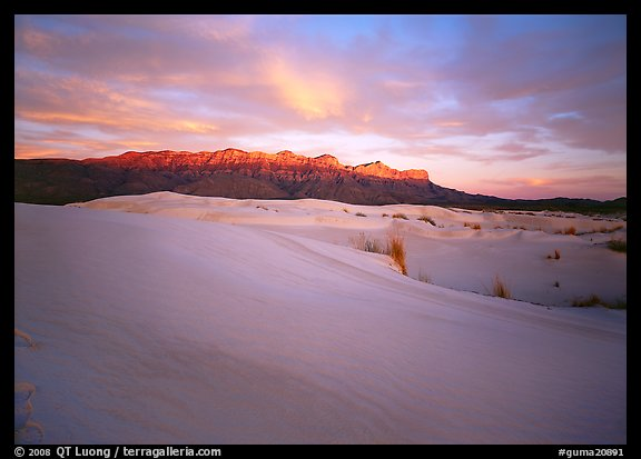 Salt Basin dunes and Guadalupe range at sunset. Guadalupe Mountains National Park, Texas, USA.
