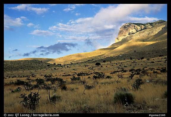 Flats and El Capitan, early morning. Guadalupe Mountains National Park (color)