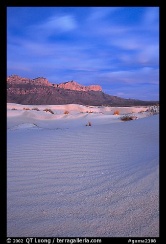 Gypsum sand dunes and Guadalupe range at sunset. Guadalupe Mountains National Park (color)