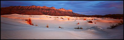 Salt Basin gypsum dunes and Guadalupe range. Guadalupe Mountains National Park, Texas, USA.