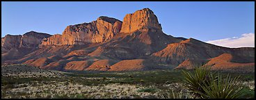 El Capitan cliffs at sunset. Guadalupe Mountains National Park (Panoramic color)