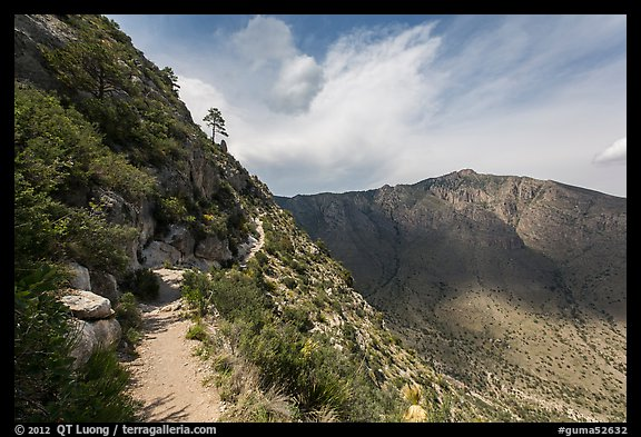 Guadalupe Peak Trail. Guadalupe Mountains National Park (color)