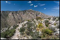 Hiker on trail above Pine Spring Canyon. Guadalupe Mountains National Park, Texas, USA. (color)