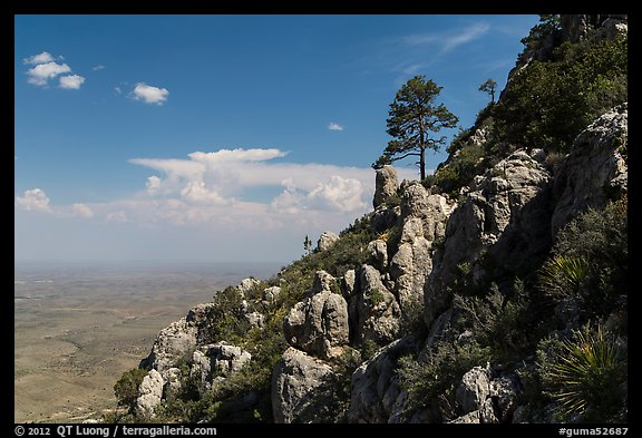 Slopes with trees and rocks high above plain. Guadalupe Mountains National Park (color)