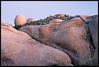 Rocks at dusk, Jumbo Rocks. Joshua Tree National Park, California, USA.