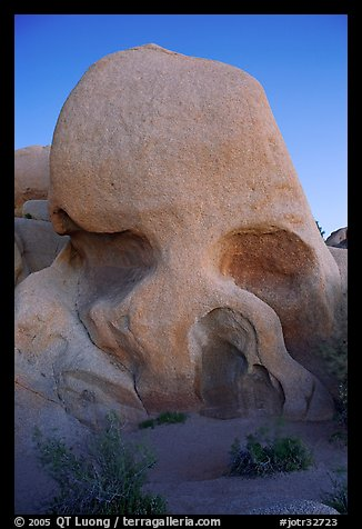 Skull rock at dusk. Joshua Tree National Park (color)
