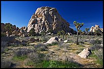 Tall rockpile. Joshua Tree National Park, California, USA. (color)
