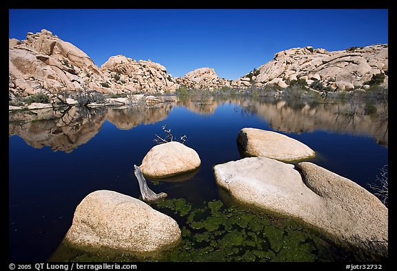 Barker Dam reservoir, mid-day. Joshua Tree National Park (color)
