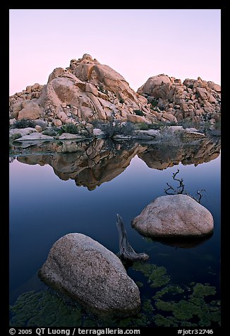 Rockpiles and reflections, Barker Dam, dawn. Joshua Tree National Park (color)