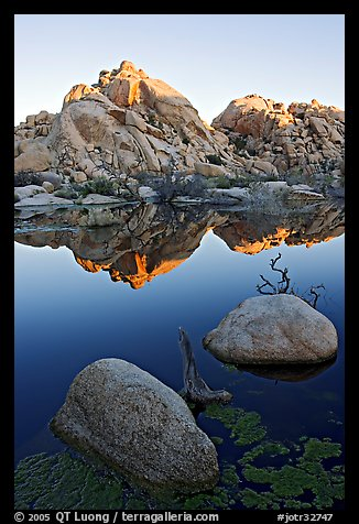 Rockpile and refections, Barker Dam, sunrise. Joshua Tree National Park, California, USA.