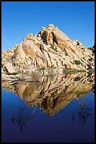 Rock formations reflected in Barker Dam Pond, morning. Joshua Tree National Park, California, USA. (color)