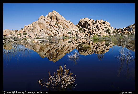 Rock formations reflected in Barker Dam Pond, morning. Joshua Tree National Park, California, USA.