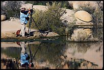 Photographer with large format camera at Barker Dam. Joshua Tree National Park, California, USA. (color)