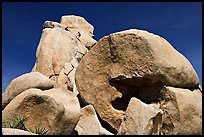 Rocks with climbers in a distance. Joshua Tree National Park, California, USA.