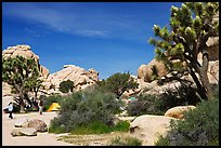 Campers, Hidden Valley Campground. Joshua Tree National Park, California, USA. (color)