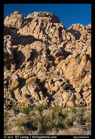 Wall of boulders, Indian Cove. Joshua Tree National Park (color)