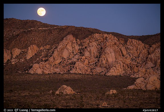 Moon rising about mountains. Joshua Tree National Park (color)