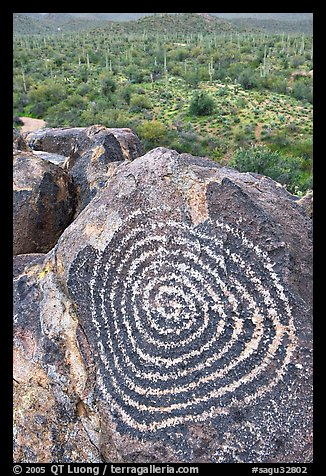 Circular Hohokam petroglyph. Saguaro National Park, Arizona, USA.