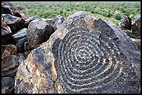 Hohokam petroglyphs on Signal Hill. Saguaro National Park, Arizona, USA. (color)