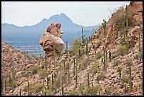 Cactus slope and balanced rock. Saguaro National Park ( color)