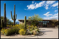 Rincon Visitor Center. Saguaro National Park ( color)