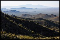 Desert mountains with saguaro-covered ridges. Saguaro National Park ( color)