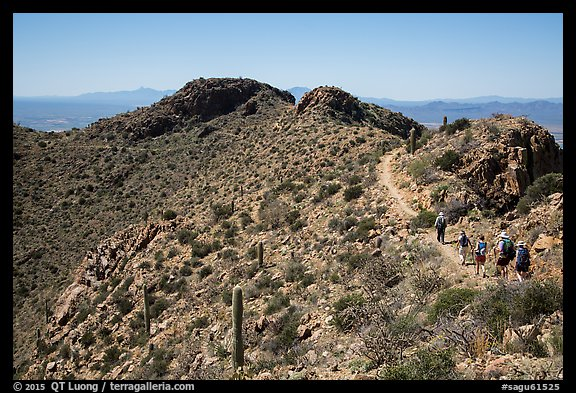 Hikers on trail below Wasson Peak. Saguaro National Park (color)