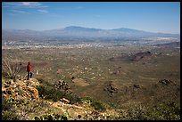 Visitor looking, Wasson Peak overlooking Tucson. Saguaro National Park ( color)