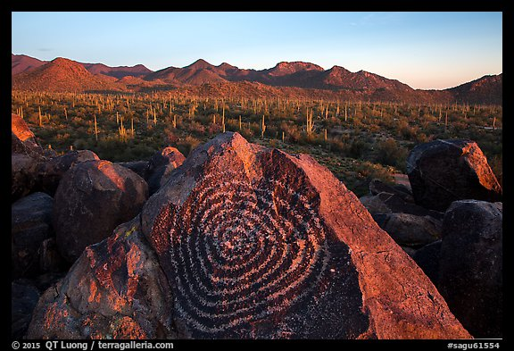 Petroglyphs on Signal Hill and Tucson Mountains at sunset. Saguaro National Park (color)